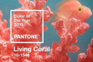 Trend-Monitor-Pantone-Colour-of-the-year-2019