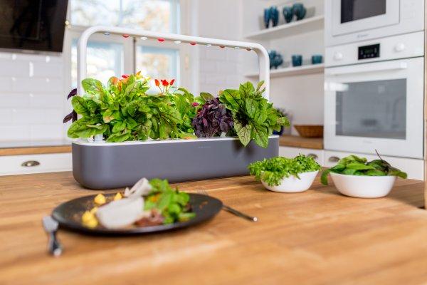Trend-Monitor-indoor-smart-gardens